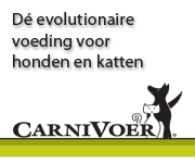 Carnivoer
